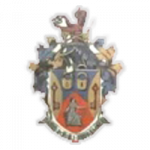 WILLENHALL LOGO.png